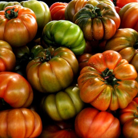 Comprar Tomate Raff online