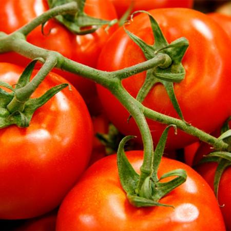 Comprar Tomate de Rama online