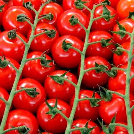 Comprar Tomate Cherry de Rama online