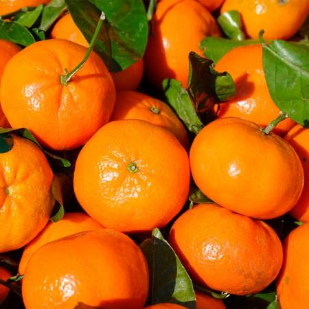 Comprar Clementinas con Hoja online