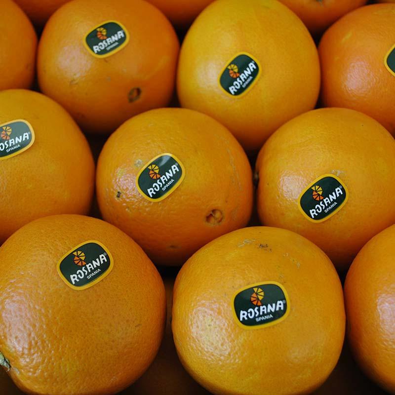 Comprar Naranja de mesa Navel Nacional online