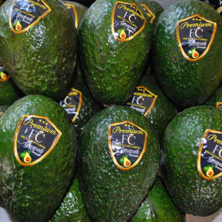 Comprar Aguacate Hass online