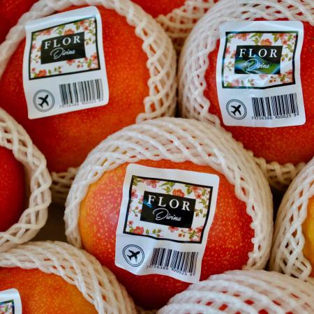 Comprar Mango de Avión online