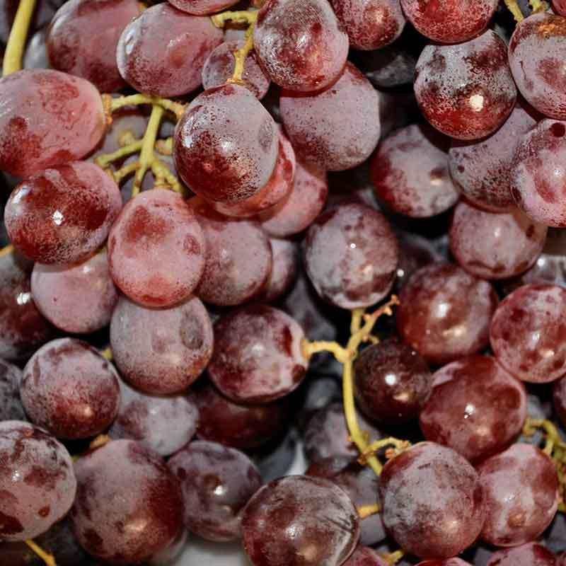 Comprar Uva rosada importación online
