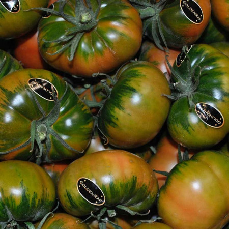 Comprar Tomate Golden Raf online