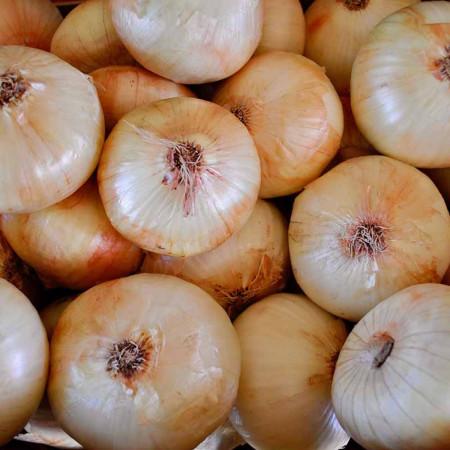 Comprar Cebolla Dulce online