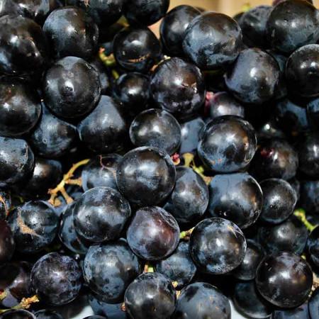Comprar Uva Negra online