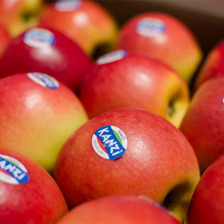 Comprar Manzanas Kanzi online